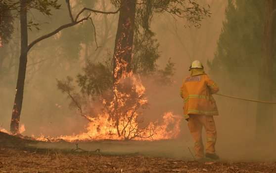 Pink şi Naomi Watts, printre vedetele care au făcutdonaţiipentru pompierii din Australia