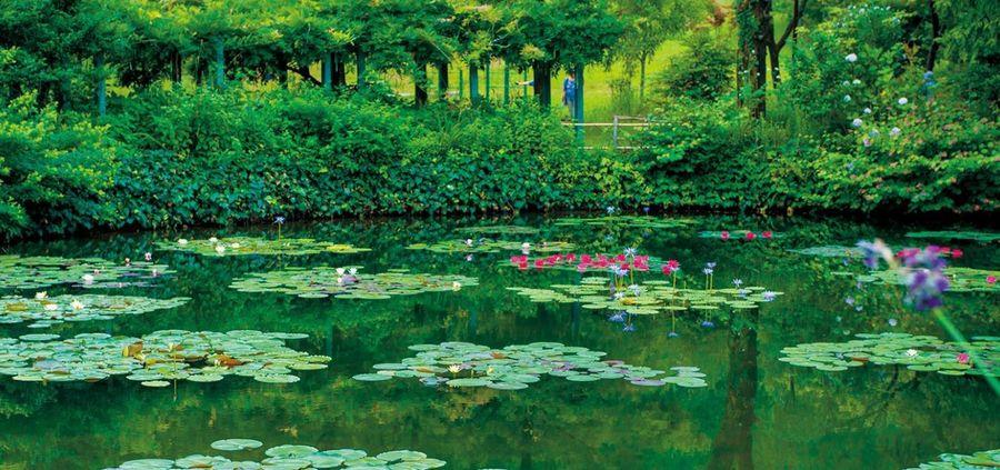 """Tur virtual în casa lui Monet: intră să vezi grădinile care i-au fost muză pentru opera """"Crini de apă"""""""