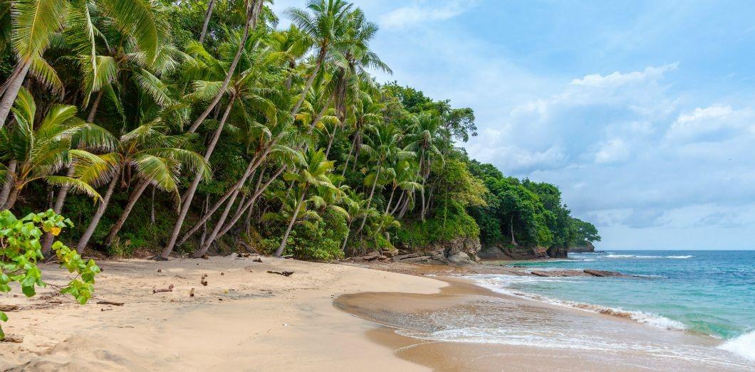 """Work from home"" din Barbados. Planul oficialilor insulei de a revitaliza turismul"
