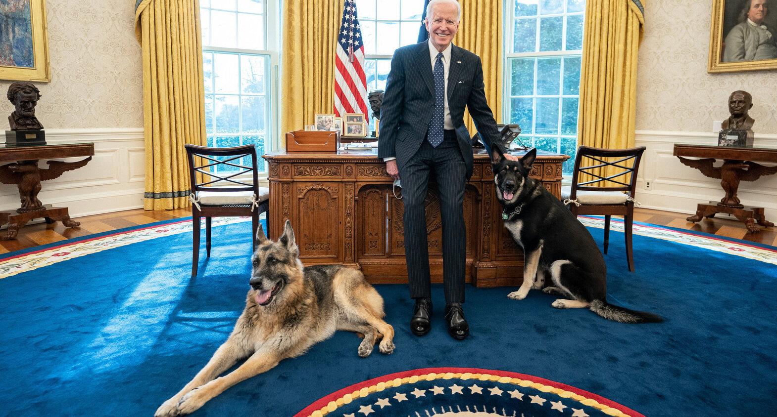Se destramă familia Biden de la Casa Albă. Câinii au fost dați afară după ce unul dintre ei a atacat un agent de securitate