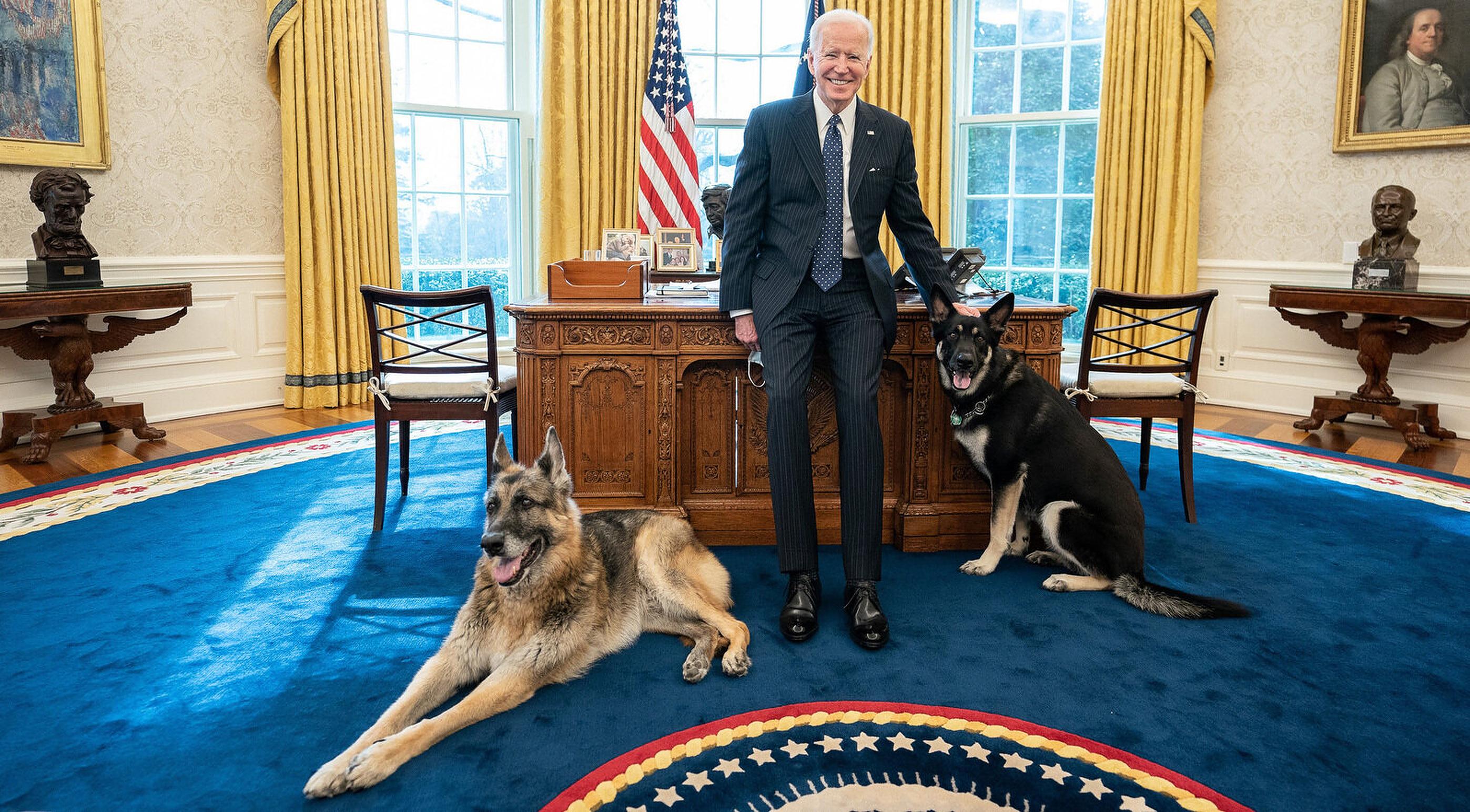 """Joe Biden anunță moartea câinelui său, """"preaiubitul"""" Champ"""
